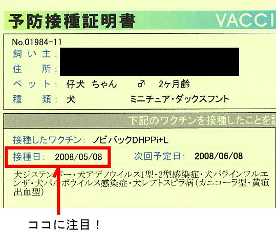 1_20100526023316.jpg