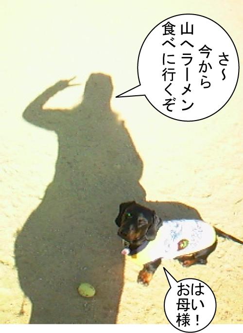 1_20101205194431.jpg