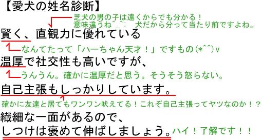 23_20100415150621.jpg