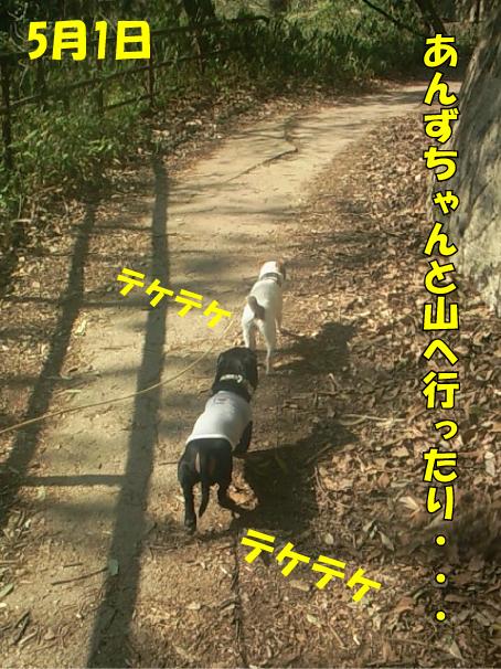 2_20100505005545.jpg