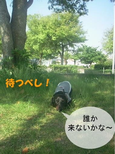 2_20100603032723.jpg