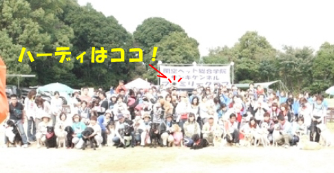 2_20101020142749.jpg