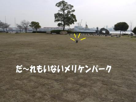 3_20100301213319.jpg