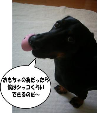 3_20100801162837.jpg