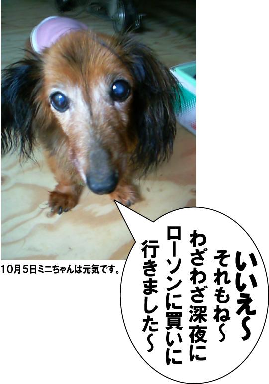 3_20101007023802.jpg