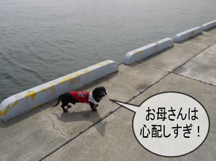 4_20100304235532.jpg