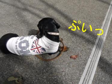 4_20100315235356.jpg