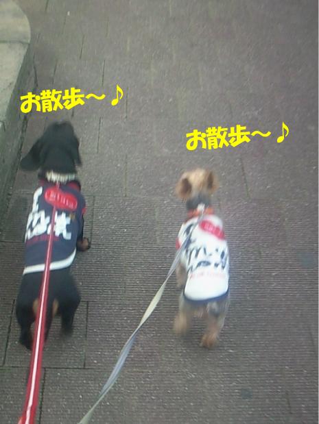 4_20100329224219.jpg