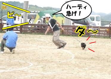 4_20101020141112.jpg