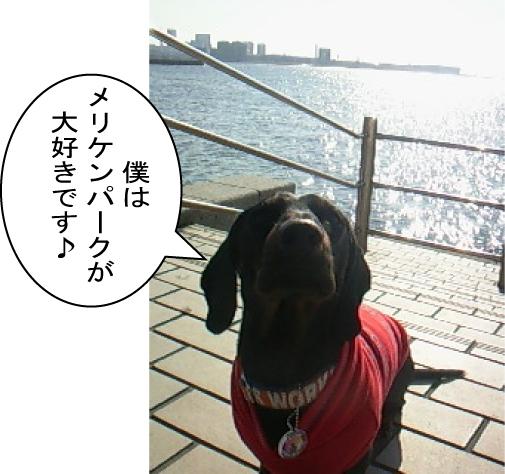 4_20110128220514.jpg