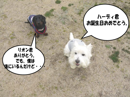 5_20100301214008.jpg