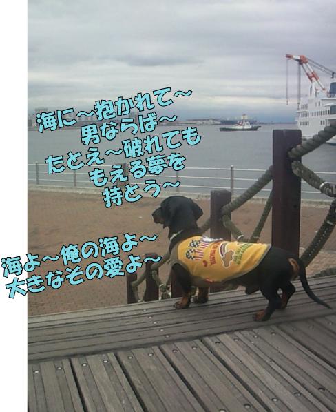 5_20100424014844.jpg