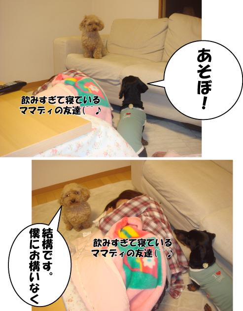 5_20100511124113.jpg