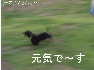 5_20100816234744.jpg