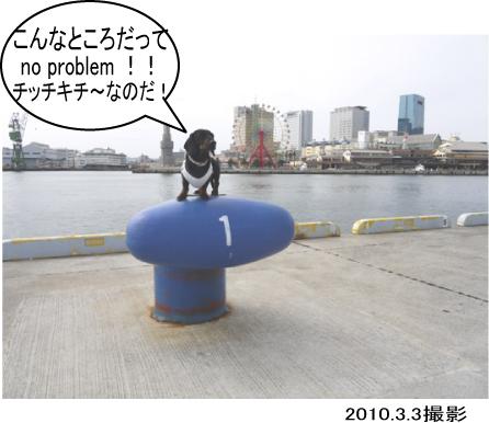 6_20100305000419.jpg