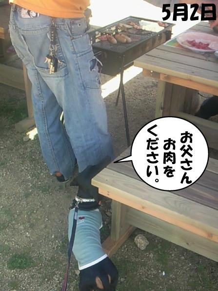 6_20100505011854.jpg