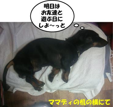 6_20100619145151.jpg