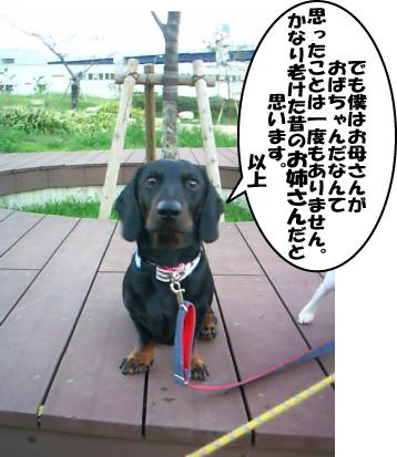6_20101013235957.jpg
