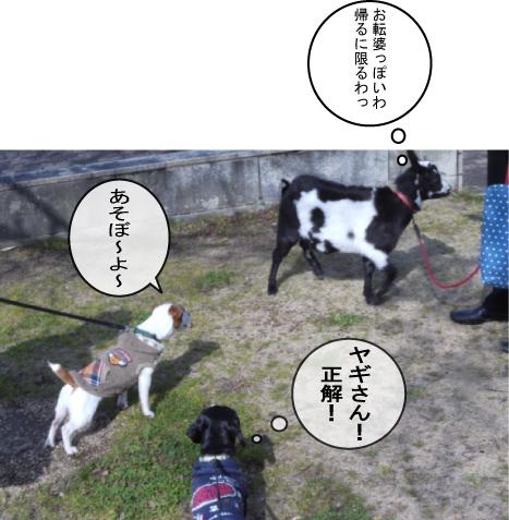 7-4.jpg