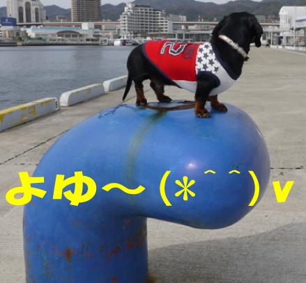 7_20100305000723.jpg