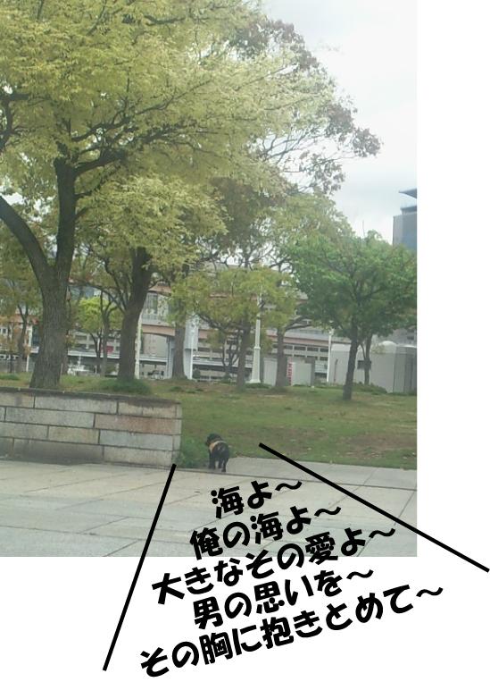 7_20100424024101.jpg