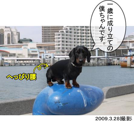 8_20100305000940.jpg