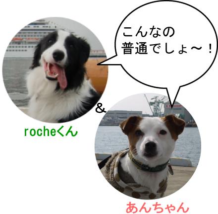 8_20100325002156.jpg