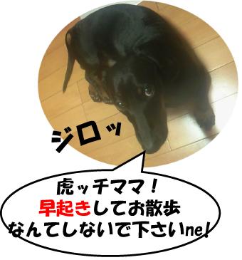 9_20100717003621.jpg