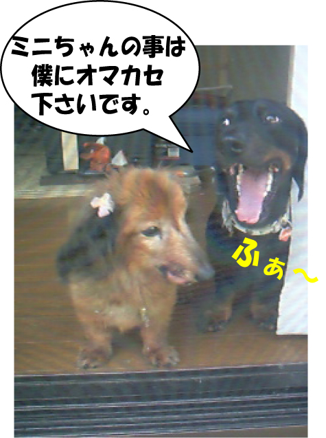9_20100826152504.jpg