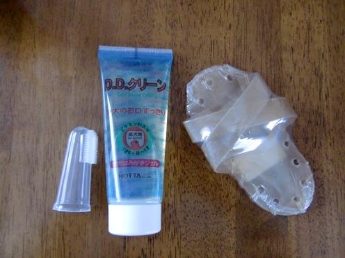 歯ブラシとガム