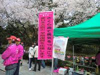 さくら道で勇気をつなごう 東日本大震災早期復興を応援します