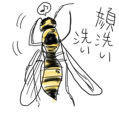 アシナガバチ5