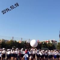 201410191150301fa.jpg