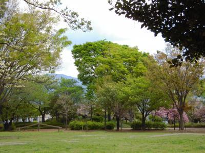 ikeda park