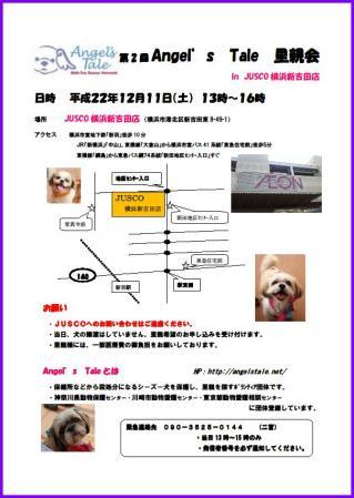 cimg_20101205012655.jpg