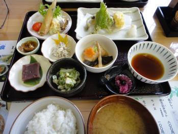 SEIRYUUTEISYOKU111010.jpg