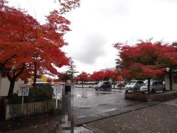 TOWADASIKOUYOU2012110101.jpg