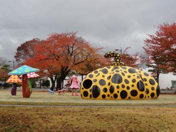 TOWADASIKOUYOU2012110104.jpg