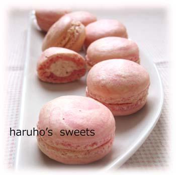 ichigo-macaron6.jpg
