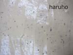 sakura-pound7.jpg