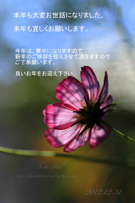 IMG_7577-001.jpg