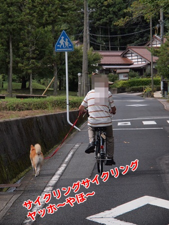 サイクリング~
