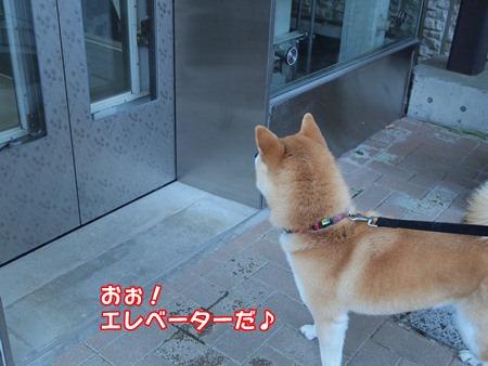 エレベーター初体験