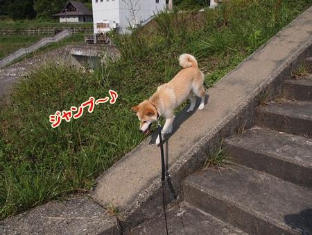 気分はジャンプ~