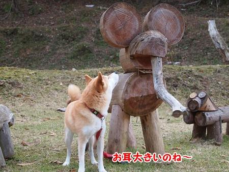 お耳が大きいね