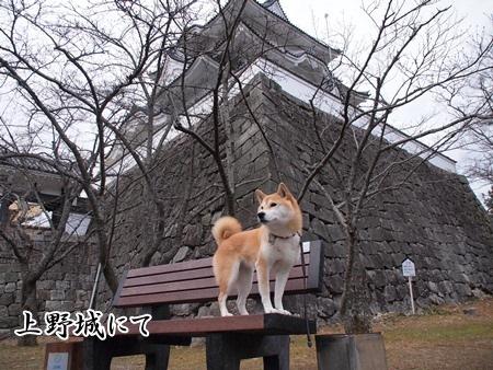 伊賀上野城にて