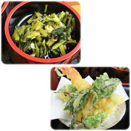 わさび菜と天ぷら