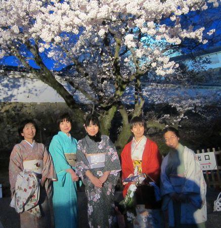 平成24年4月7日夜桜1