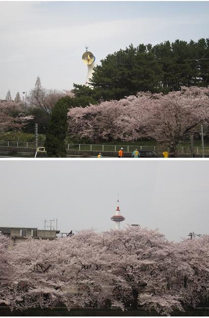 平成24年4月13日京都