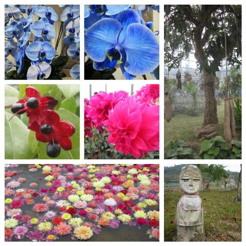 PicsArt_1350462293218.jpg